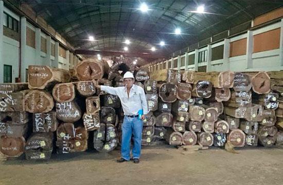 laminas-madera-bolivia-14
