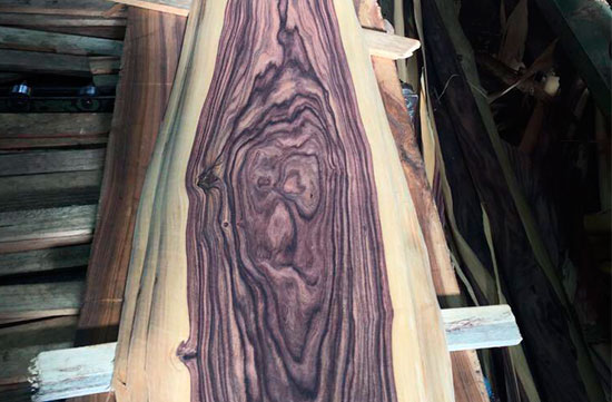 laminas-madera-bolivia-5